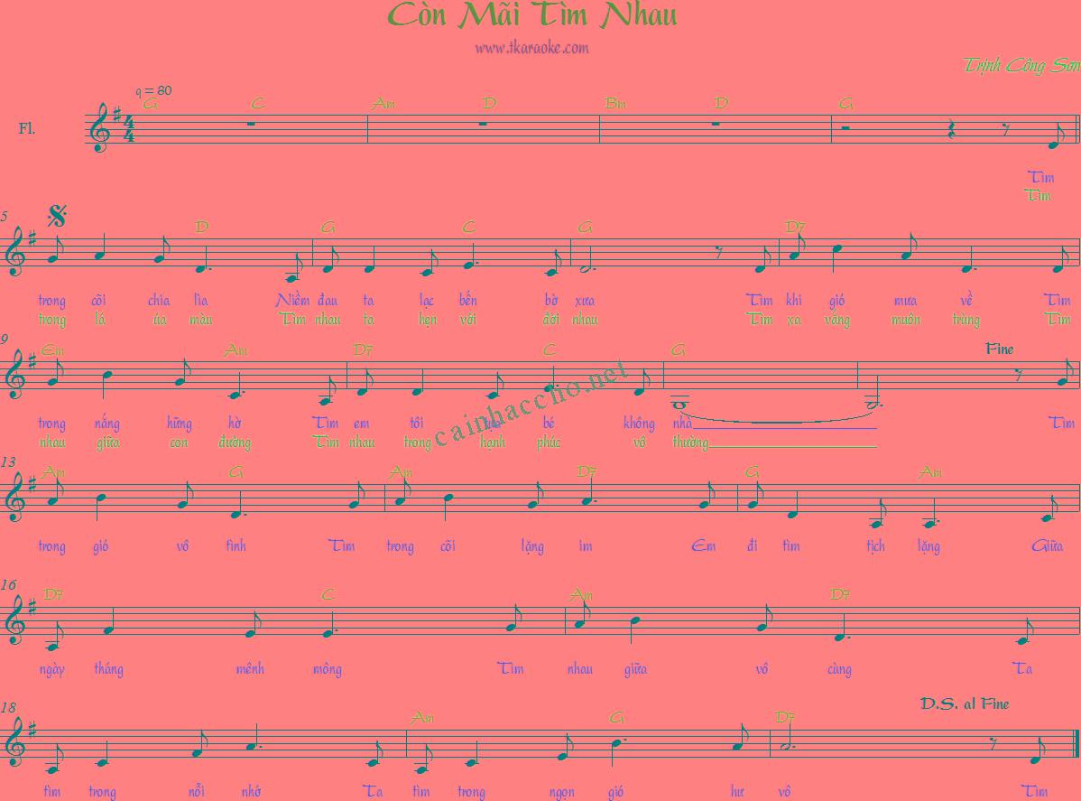 Lời bài hát Còn mãi tìm nhau