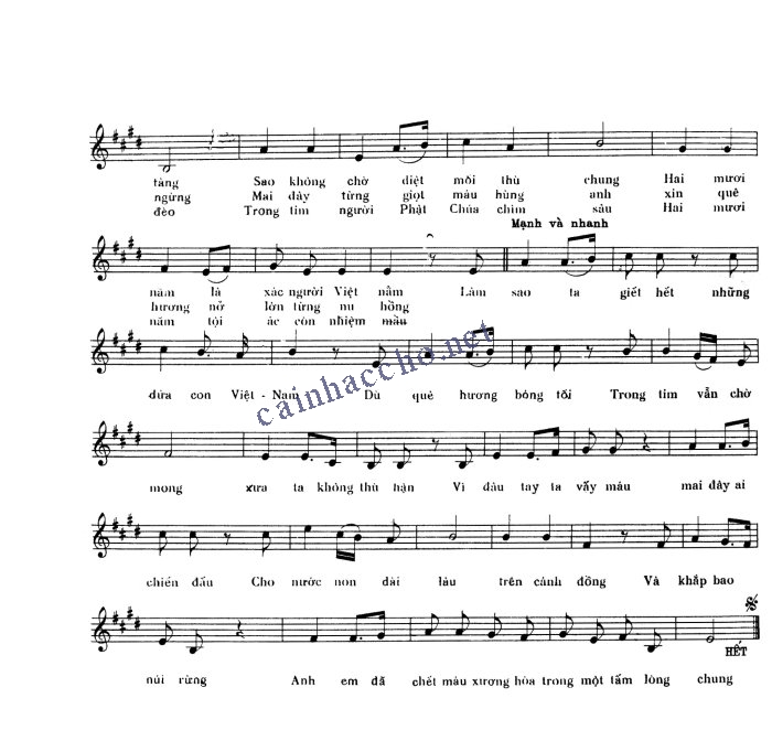 Lời bài hát Tuổi trẻ Việt Nam