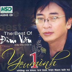 Ca sĩ Đình Văn